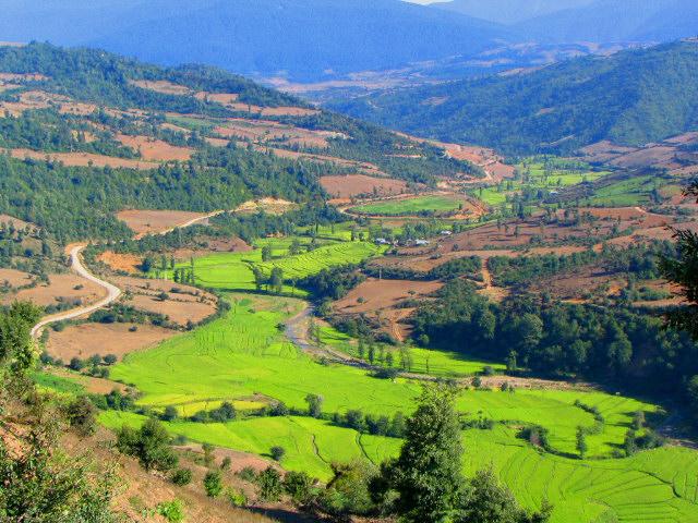 http://velamdeh.persiangig.com/image/Shalizir.jpg